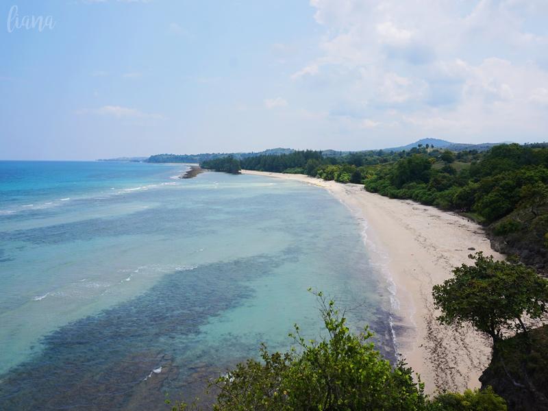 Lamreh Aceh